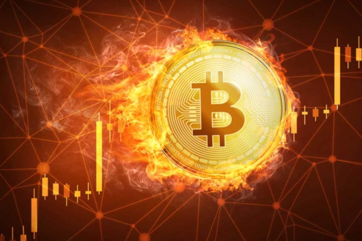 Criptovalute - Bitcoin contro Dogecoin (Google immagini)