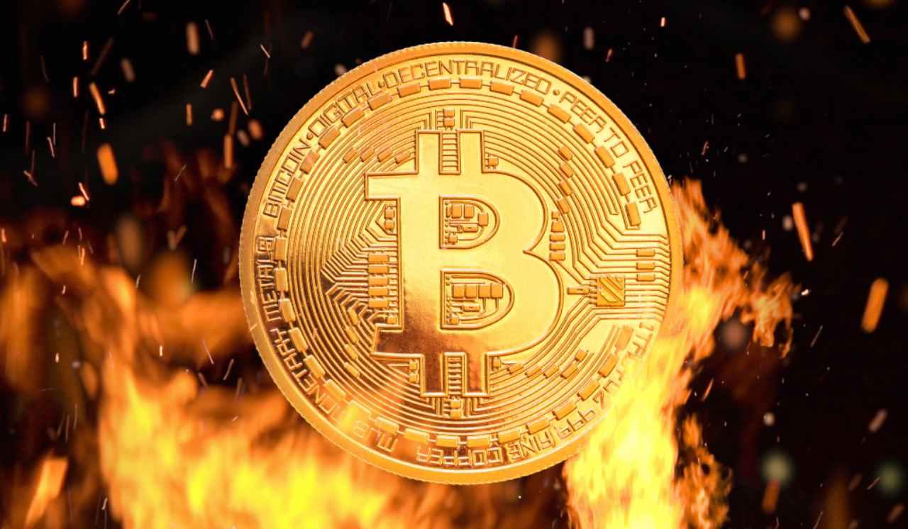 la donna btc bitcoin akcijų pavadinimas