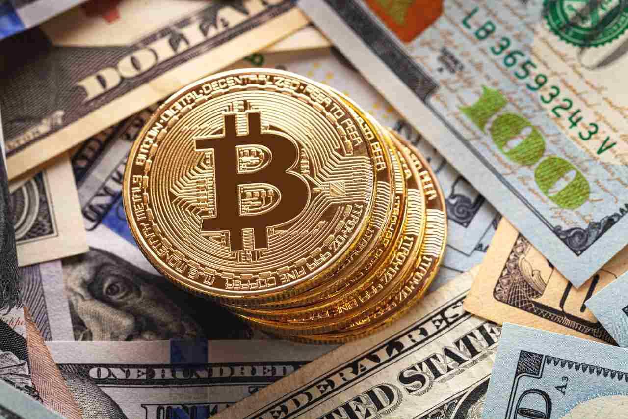 bitcoin dollari
